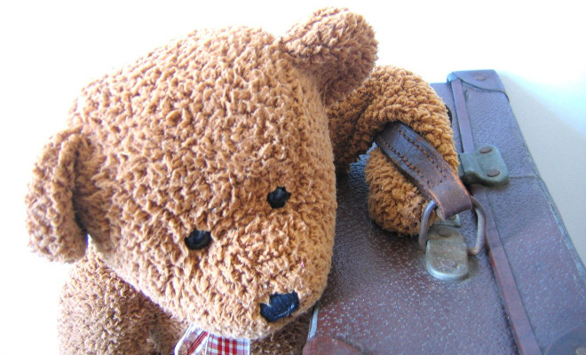 Travelling Teddy